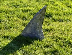 """Lawn Shark • <a style=""""font-size:0.8em;"""" href=""""http://www.flickr.com/photos/72528309@N05/26230688293/"""" target=""""_blank"""">View on Flickr</a>"""