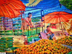 Selling Oranges at the Local Market Ban Kruat ...