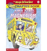 MSB Magnetism