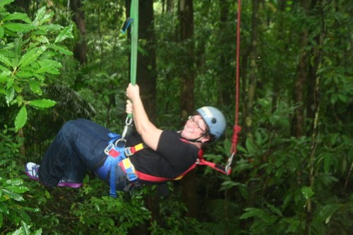 Daintree Forest Jungle Surfing