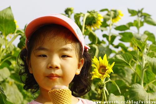 [旅遊.台中]2011台中新社花海.花毯節~人物寫真篇 @VIVIYU小世界