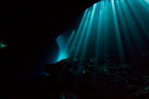 Ponderosa Cenote