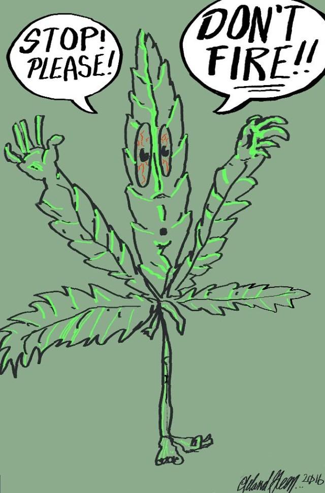 Cannabis Comix #1
