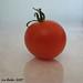 """""""Tomato"""" - September 17, 2007"""