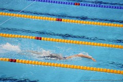 Swimming Finals - 9th March 2012 - Aquatics Ce...
