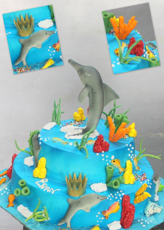 The Worlds Best Photos Of Dolphin And Fondant Flickr