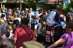 Disney's Animal Kingdom Crowd