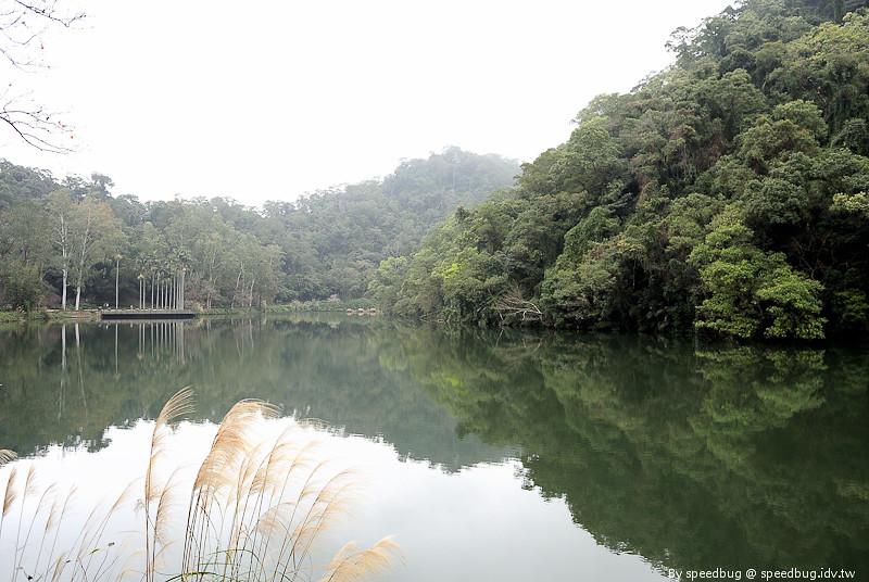 後慈湖 (35)