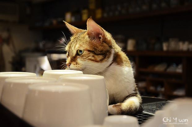 極簡Cafe01.jpg