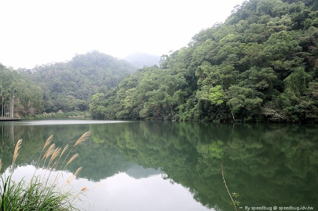 後慈湖 (41)