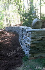 WM Dale Mitchell Landscape 3, Retaining Wall, dry laid stone construction, copyright 2014
