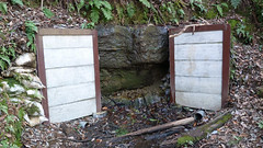 獅子ヶ谷市民の森(西谷広場の湧き水)(Foundation at Nishitani Square, Shishigaya Community Woods)