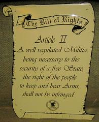20120429 - yardsale booty - Second Amendment s...