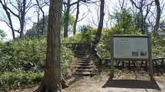 綱島古墳(綱島公園・神奈川県横浜市港北区)(Tomb at Tsunashima Park, Yokohama, Japan)