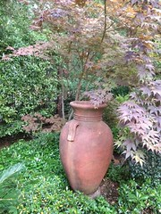 "I love big pots in the garden! • <a style=""font-size:0.8em;"" href=""http://www.flickr.com/photos/79686536@N02/7310260816/"" target=""_blank"">View on Flickr</a>"