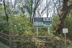 どんぐり山(綱島公園・神奈川県横浜市港北区)(Donguriyama Mt. at Tsunashima Park, Yokohama, Japan)