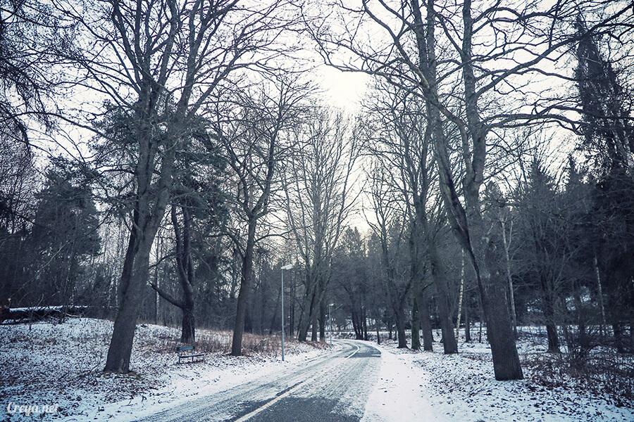 2016.06.23 | 看我歐行腿 | 謝謝沒有放棄的自己,讓我用跑步遇見斯德哥爾摩的城市森林秘境 13