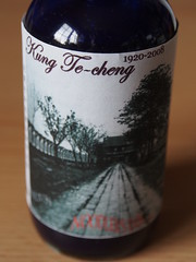 Noodler's Kung Te Cheng - Close Up