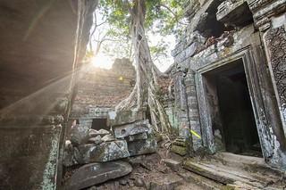 angkor - cambodge 2016 102