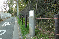 獅子ヶ谷市民の森(歴史と森の散歩道)(Street of History and Woods, Shishigaya Community Woods)
