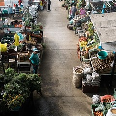 Day 423. Spent a long overdue morning exploring La Plata. About a week ago I found a great breakfast spot and have been eating there every morning. Today I went to the market though and had breakfast there. (Reposted for better quality) #theworldwalk #tra