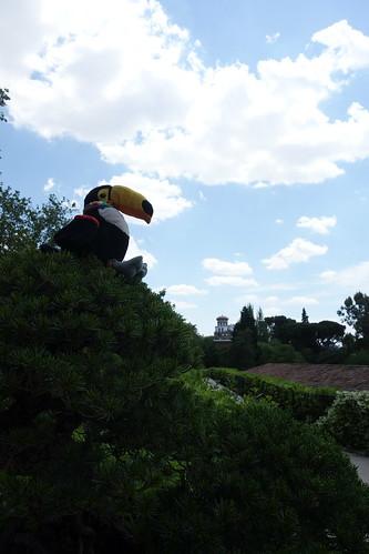 Sur un bonsaï (même nous ne sommes pas au Japon).