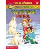 MSB Polar
