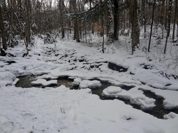 Garfield Trail Stream Crossing