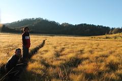 "Pendakian Sakuntala Gunung Argopuro Juni 2014 • <a style=""font-size:0.8em;"" href=""http://www.flickr.com/photos/24767572@N00/27161427675/"" target=""_blank"">View on Flickr</a>"