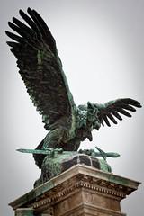 Budapest - Palais Royal The Turul (Eagle) Statues