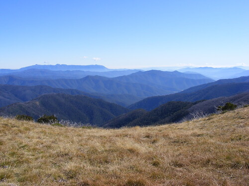 Picture from Mt. Feathertop