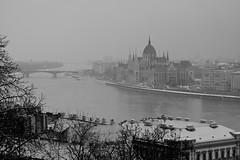 Budapest - Palais Royal - Vue sur le Parlement