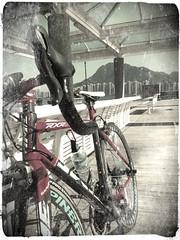 香港サイクリング