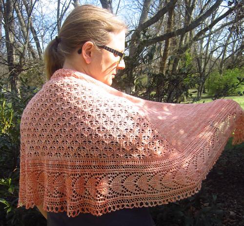 holbrook shawl