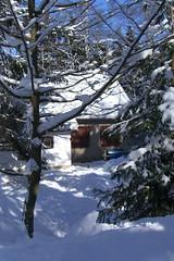 CIMG3568 Greifensteinhütte