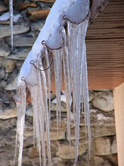 Icicles-Hanging-from-an-Ice-Dam__165222