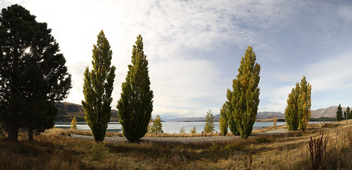 Am Ufer des Lake Tekapo