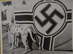 Salute to the Nazis
