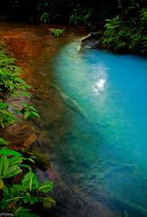Rio Celeste (sky blue water)