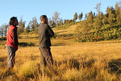 "Pendakian Sakuntala Gunung Argopuro Juni 2014 • <a style=""font-size:0.8em;"" href=""http://www.flickr.com/photos/24767572@N00/27092956371/"" target=""_blank"">View on Flickr</a>"