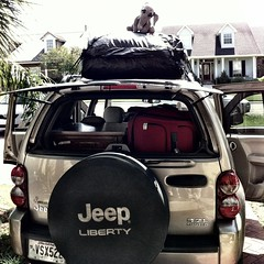 Packing the car for a road trip.