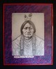 "Chief Sitting Bull • <a style=""font-size:0.8em;"" href=""http://www.flickr.com/photos/72528309@N05/7294882434/"" target=""_blank"">View on Flickr</a>"