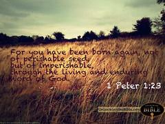 1 Peter 1:23   Born Again Through the Living W...