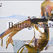 "Battlegrounds • <a style=""font-size:0.8em;"" href=""http://www.flickr.com/photos/83523505@N04/8169335920/"" target=""_blank"">View on Flickr</a>"