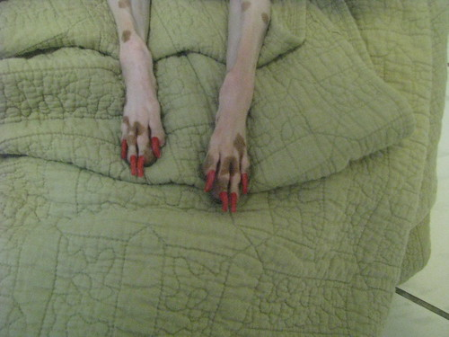 Red Toes Close-up