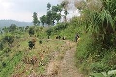 "Pendakian Sakuntala Gunung Argopuro Juni 2014 • <a style=""font-size:0.8em;"" href=""http://www.flickr.com/photos/24767572@N00/27093789981/"" target=""_blank"">View on Flickr</a>"