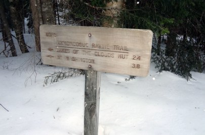Ammonoosuc Ravine Trail Sign