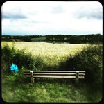 Seat on fields