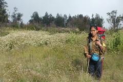 "Pendakian Sakuntala Gunung Argopuro Juni 2014 • <a style=""font-size:0.8em;"" href=""http://www.flickr.com/photos/24767572@N00/26555838424/"" target=""_blank"">View on Flickr</a>"