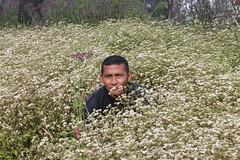 "Pendakian Sakuntala Gunung Argopuro Juni 2014 • <a style=""font-size:0.8em;"" href=""http://www.flickr.com/photos/24767572@N00/27093409041/"" target=""_blank"">View on Flickr</a>"